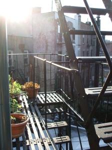Brooklyn sundowns