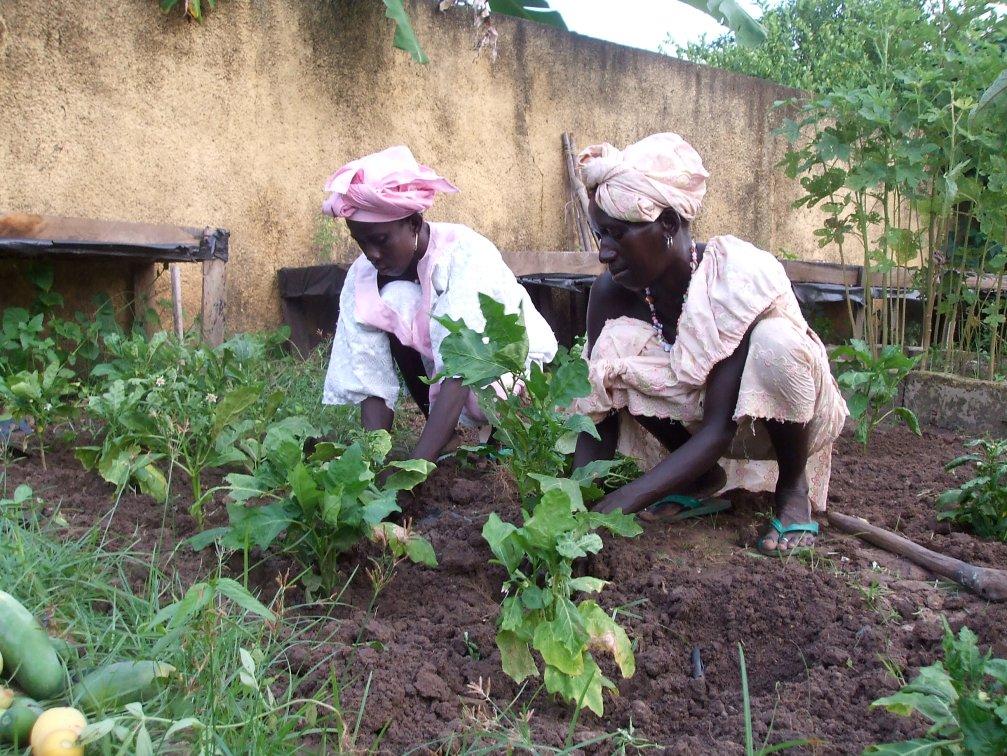 Fatou and Manssata in the garden